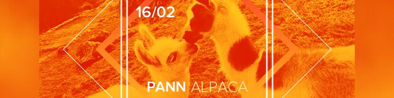 PANN Alpaca | 16/02